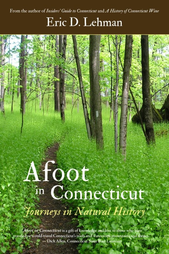 Afoot in Connecticut Cover